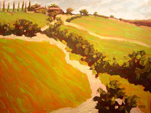 Fields of Castelnuovo