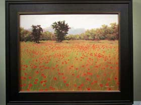 POPPY FIELDS