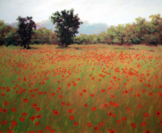 THE POPPY FIELDS