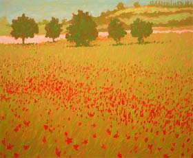 POPPY FIELDS ITALY